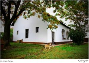 Kunmadaras Kossuth ház 12